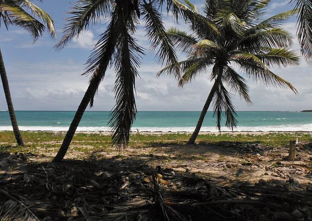 Martinique_1455106079